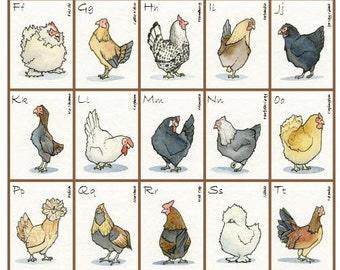 "Chicken Breed Alphabet (Hens), 12"" x 16"", Original Print, Watercolor Illustration"