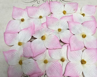 Set of 12 tropical flowers