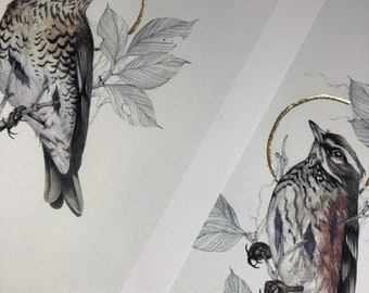 Autumn Thrushes Print Set. Fieldfare and Redwing, hand finished with gold leaf.
