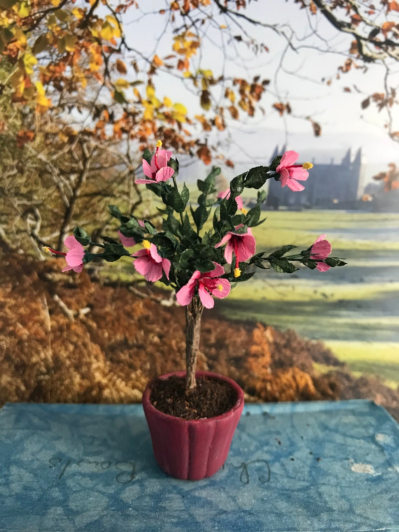 Hibiscus Potted Miniature 112 Scale Etsy