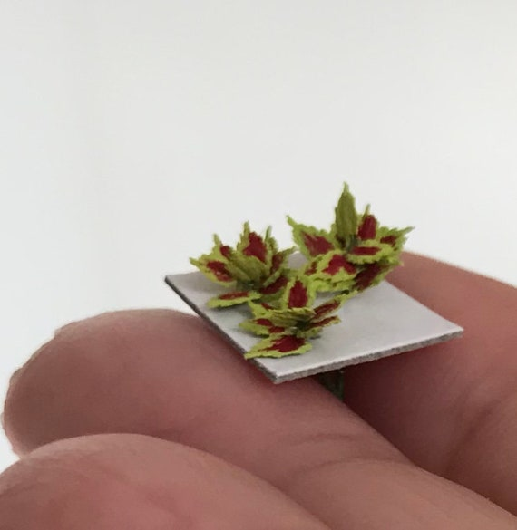 Dollhouse miniature DIY Quarter scale laser cut  Coleus Leaves