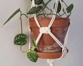 Macrame plant hanger great white