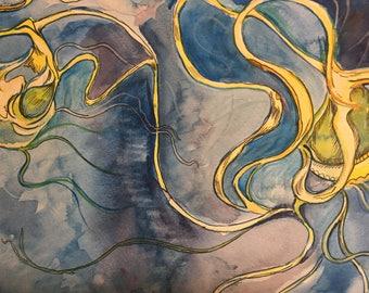 Atlantic Jellyfish 1