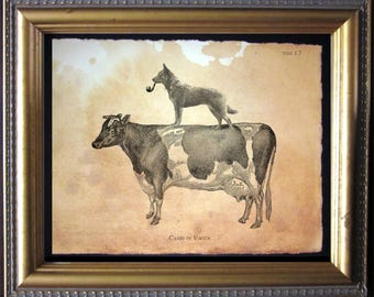 Australian Cattle Dog Riding Cow Vintage Collage Print Tea Stained dog art dog  for her novelty    for easter WFH office art