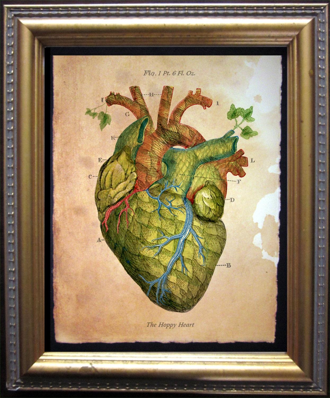 The Hoppy Heart Print Vintage Anatomy Heart Beer Hops Art | Etsy