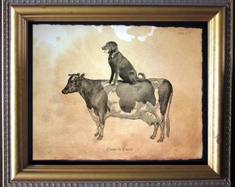Labrador Retriever Lab Riding Cow Vintage Collage Print Tea Stained dog art dog gift for her gift home office art WFH gift