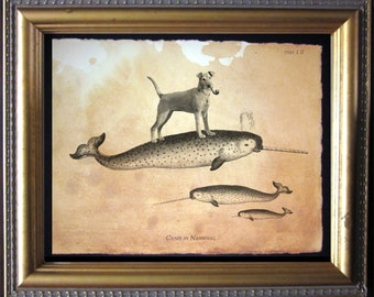 Irish Terrier Dog Riding Narwhal Vintage Collage Print Tea Stained dog art dog    for her narwhal    xmas  for momdog christmas gift