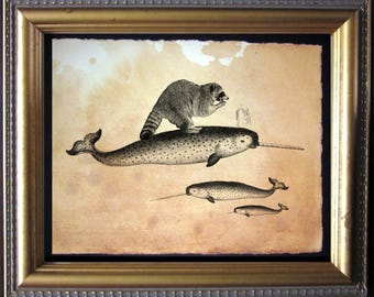 Raccoon Riding Narwhal  Vintage Collage Art Print on Tea Stained Paper   dog art  dog s        xmas  for momWFH office artdog christmas gift
