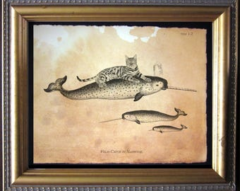 Cat Riding Narwhal Bengal Cat Narwhal Vintage Collage Art Print on Tea Stained Paper cat art cat    for her xmas  for momdog christmas gift