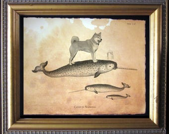 Shiba Inu Dog Riding Narwhal  Vintage Collage Art Print Tea Stained dog art dog gift for her gift for home office art WFH art