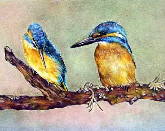 Original Drawing Colored Pencil Bird Illustration Cute ...