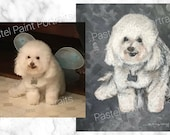 CUSTOM PET PORTRAIT - Dog...
