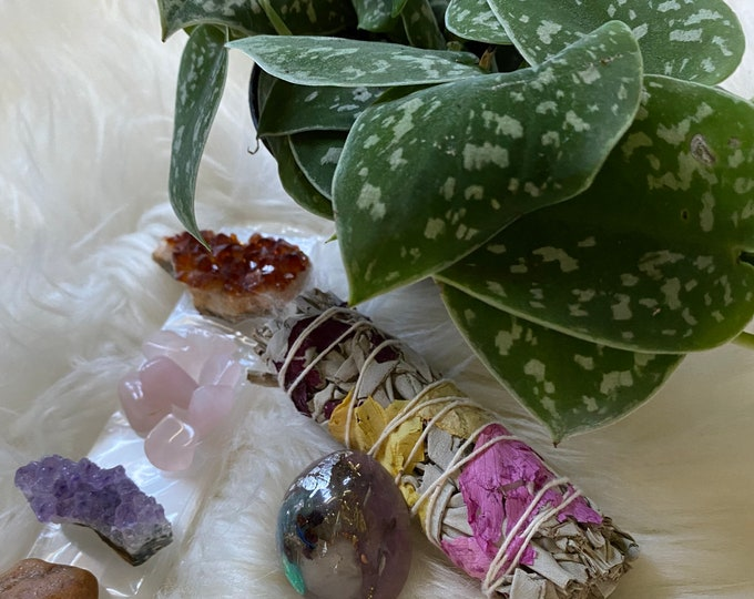 Featured listing image: Silver Satin Pothos Plant, Orgonite & Crystals Gift Set