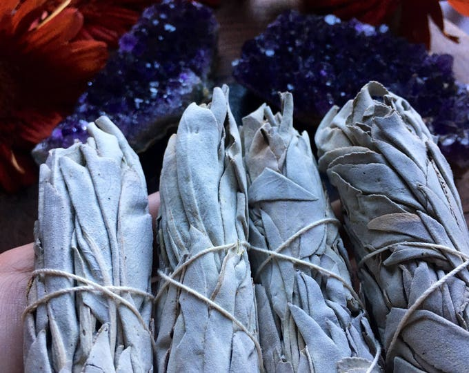 Featured listing image: White Sage Smudge Sticks