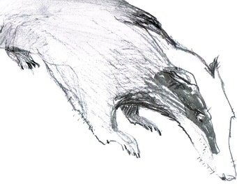 Charcoal Drawing of a Badger * The Wind in The Willows * Art Print * Badger lover gift * Monochrome