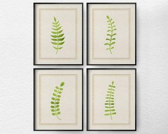 Fern Art, Fern Print, Fern Botanical Print, Botanical Print Set, 4 Set Fern Wall Art, Bathroom Decor, Living Room Art, Kitchen Decor, 0402