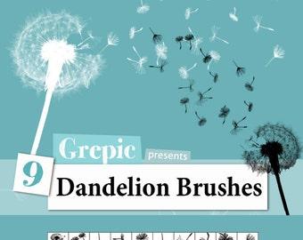 Photoshop brush: 9 Dandelion Photoshop Brushes
