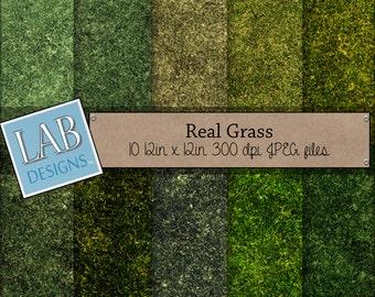 graphic regarding Printable Grass identified as Gr printable Etsy