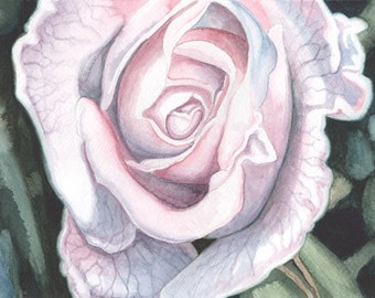White Rose Watercolour Painting, Flower Painting
