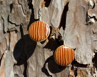 Cabochon Longleaf Heartwood Earrings in Sterling Silver
