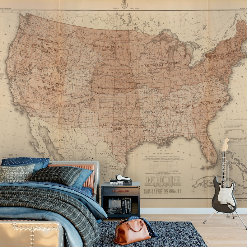 Wall Mural Vintage 1889 AMERICA MAP Wall Fabric or Vinyl Decal Sticker  Wallpaper Vintage Map Decor United States Districts American Map