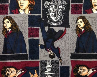 TWO Fat Quarters of Fabric - Harry Potter Fabric, Frames
