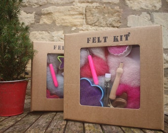 Needle Felting  Kit - all you need to start needle felting
