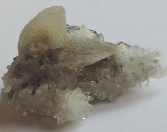 """Calcite crystals and druse in """"dog tooth"""" on Fluorite matrix 18,18gr. #FC11"""