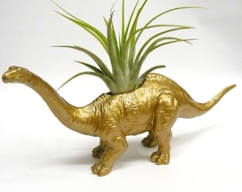 Gold Apatosaurus Dinosaur Planter with Air Plant // Coworker Gift // For Her // For Him / fathers day / house warming