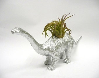 Silver Apatosaurus Dinosaur Planter with Air Plant // Coworker Gift // For Her // For Him // house warming present
