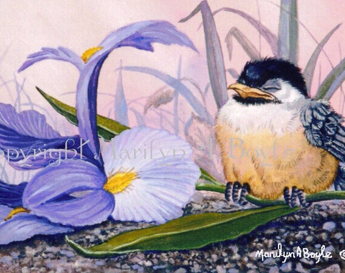 BABY CHICKADEE ACEO Card;, 2.5 x 3.5 inches, Limited Edition run of 15, flower, iris, bird, feathers, wings, garden, nature, print