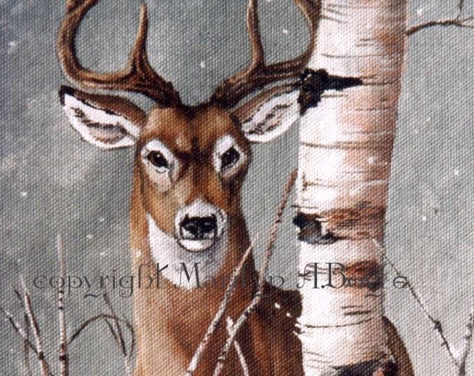 WILDLIFE PRINT- DEER; white tail deer, winter, birch, from original art, Canadian art, wall art, nature, wildlife, deer print