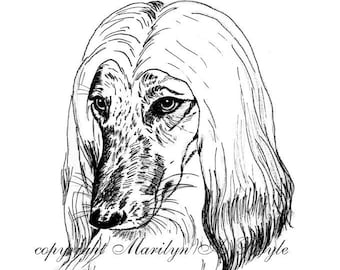 PRINT- DRAWING of AFGHAN Hound; head study, pen and ink, wall art, dog portrait, 8 x 10 inch, gift,