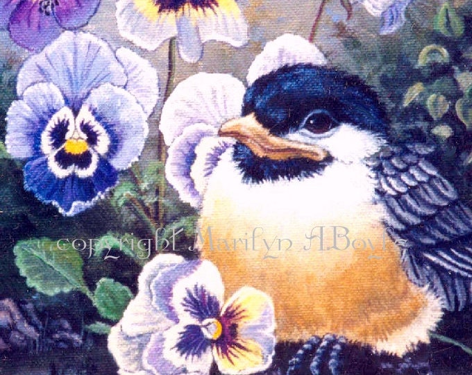 CHICKADEE ACEO CARD;free shipping, Limited Edition print of only 15,baby chickadee flowers,pansies,nature feathers, wings, 2.5 x 3.5 inches,