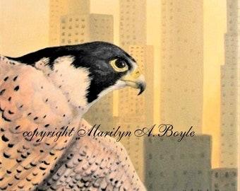 ORIGINAL PEREGRINE FALCON;  acrylic painting, 12 x 16 inches wrap around gallery canvas, bird of prey, wildlife art, Canadian art,