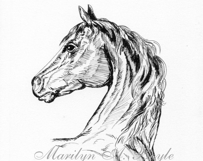 HORSE PORTRAIT - INK Drawing; Print, Equine art, wall art, horse art, black and white, horse enthusiast, birthday gift,