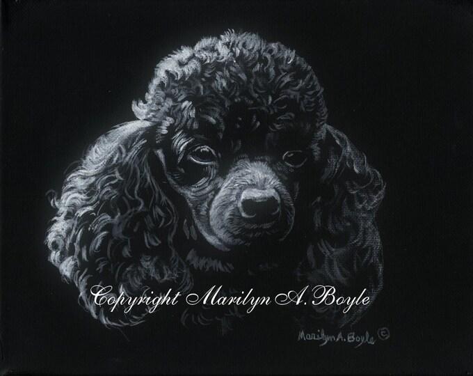 POODLE - ORIGINAL ACRYLIC; limited palette on 8 x 10 inch wrap around canvas, wall art, black poodle, pet portrait,