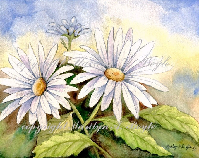 WATERCOLOR ORIGINAL-DAISIES; garden, flowers, wall art, Canadian art, nature, 8 x 11 inches
