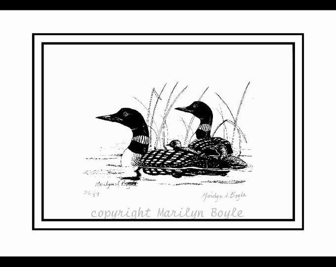 LT. ED. PRINTS; pair of  pen and ink loons, 26/50 signed and numbered, wilderness, Canadian art, loon family, loon pair, double matted