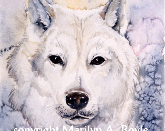 GICLEE PRINT - WOLF; white wolf, art. winter, wall art, wilderness, wildlife, nature, Canadian art, wildlife art, wolf print
