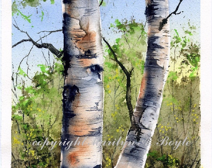 ORIGINAL WATERCOLOR PAINTING - Birches, scene, spring, trees, watercolor,nature, original art, Canadian art, 6.25 x 10 inches, wall art,