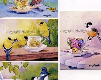 """ACEO LIMITED EDITION Prints;set of four""""Teacup Series"""" birds,run of only 10 sets song birds, teacups, nature, garden, wings, feathers,"""
