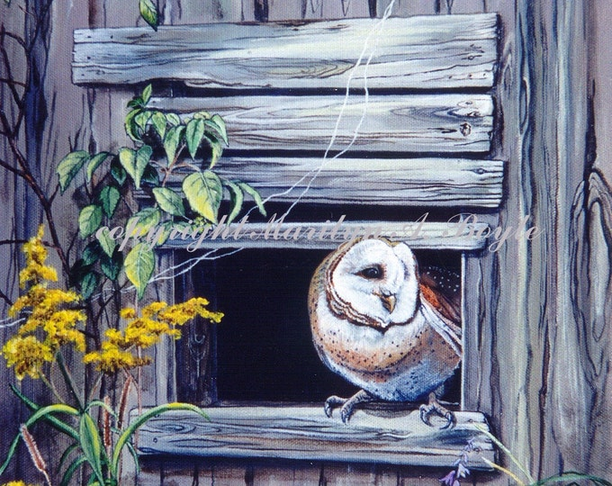 GICLEE PRINT OWL; barn owl, nature, wildlife, old shed, wings, feathers, wall art, 8 x 10 inches, bird of prey, Canadian art