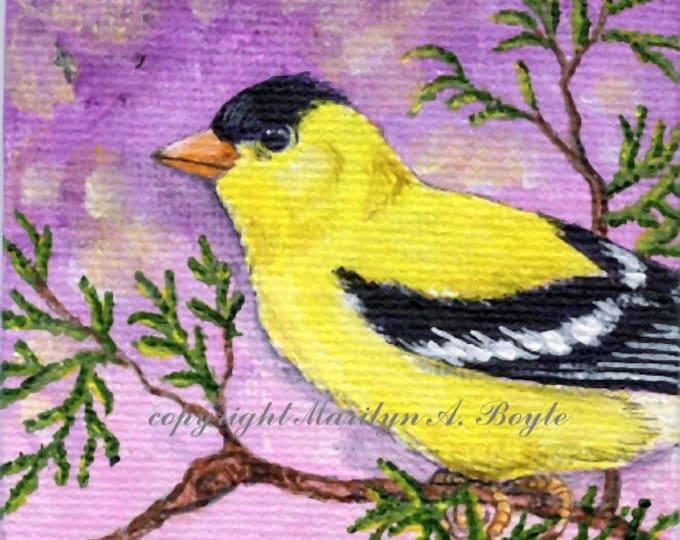 ORIGINAL MINIATURE ART; 3 x 3 canvas board on wood easel, golffinch, garden, nature, shelf art,
