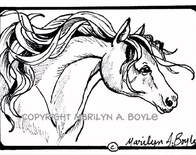 ACEO ORIGINAL DRAWING; horse,pen and ink, black and white, 2.5 x 3.5 inches
