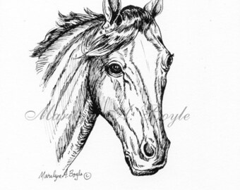 PAIR of HORSE PORTRAITS; pen and ink drawings, wall art, Equine, 8.50 x 11 inches, great for certificate frames,