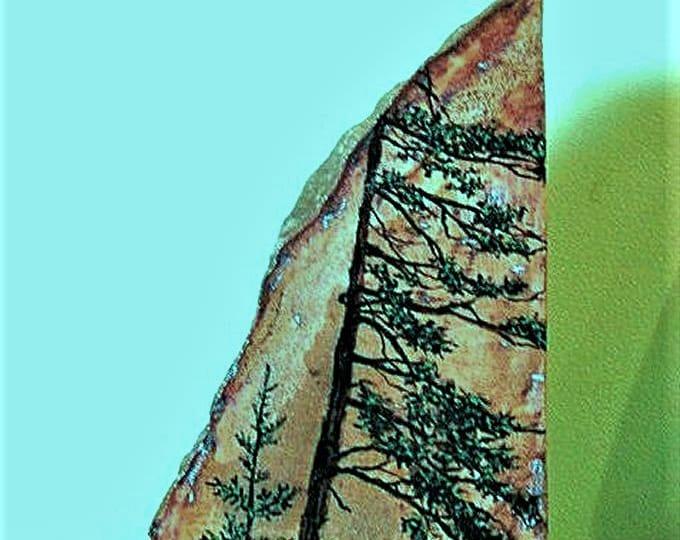 "HAND PAINTED STONE; ""bookend"" stone, original art, three sides, trees, one of a kind, desk art, shelf art,"