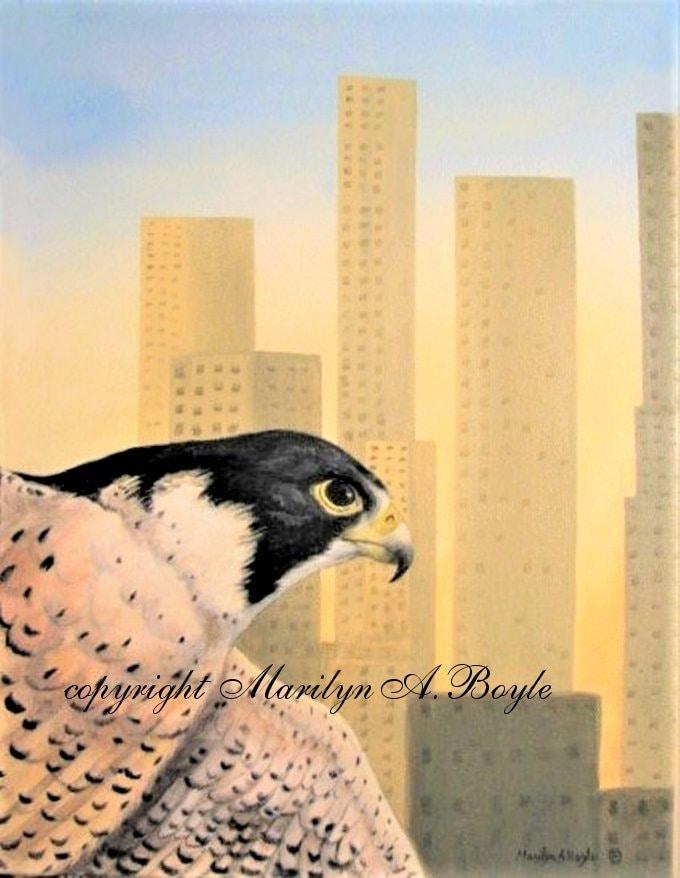 Peregrine Falcon Original Acrylic Painting 11 X 14 Inches Wrap