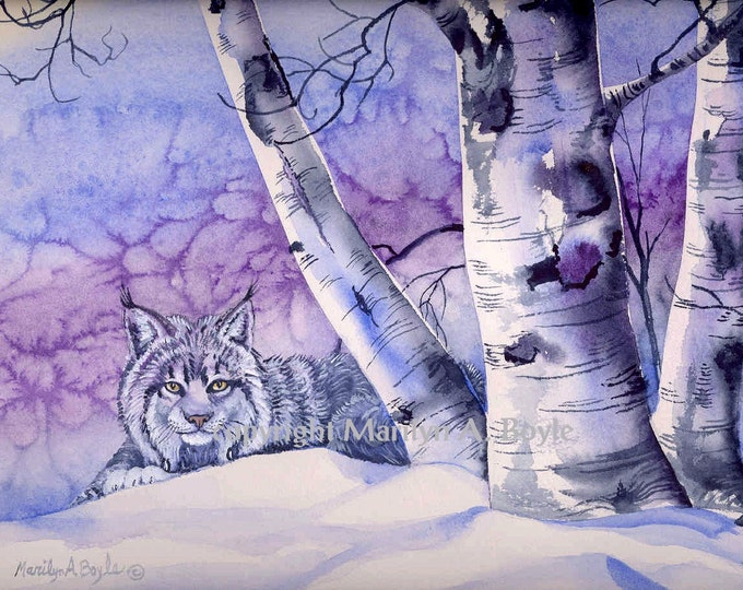 ORIGINAL MIXED MEDIUM: Young Canada Lynx,free shipping,winter,birch trees, Canadian art, wilderness, nature,