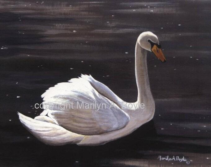 SWAN PRINT -  WILDLIFE: wall art, 8 x 10 inches, Canadian art, swan on the lake, serenity